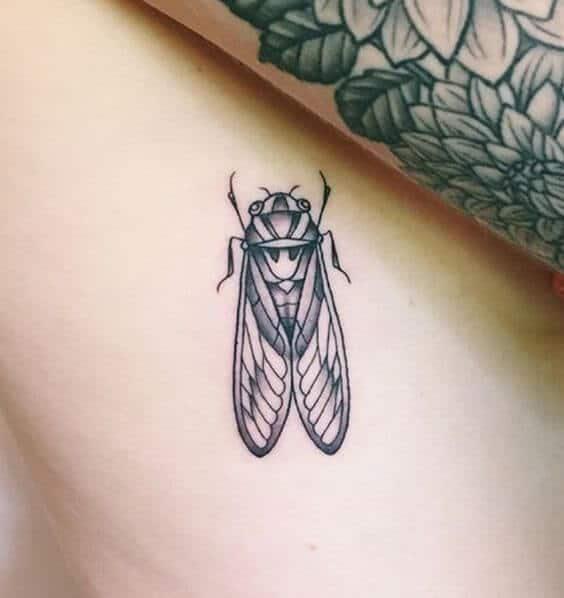 Cicada tattoo meaning for women.